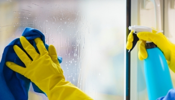 Benefits of Cleaning Windows